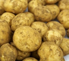 KartoffelSupport